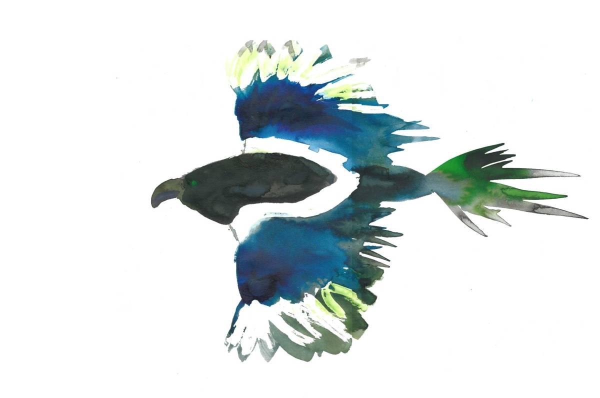 Magpie by Myfanwy Tristram