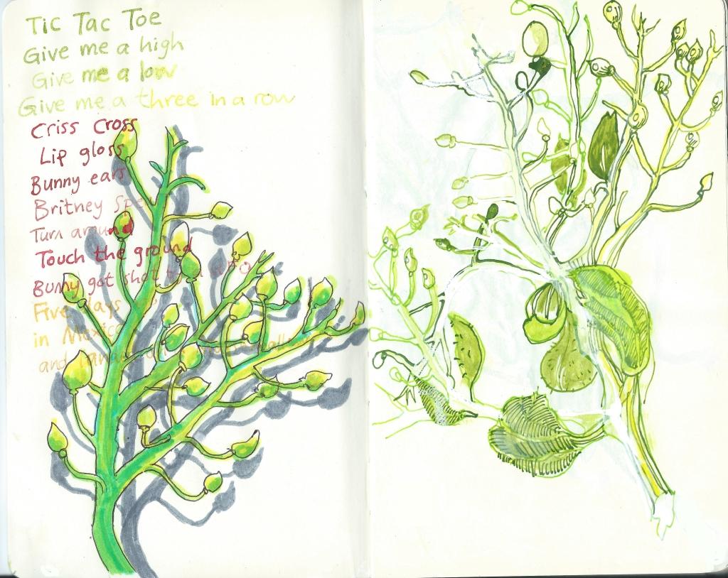 Seaplants by Myfanwy Tristram