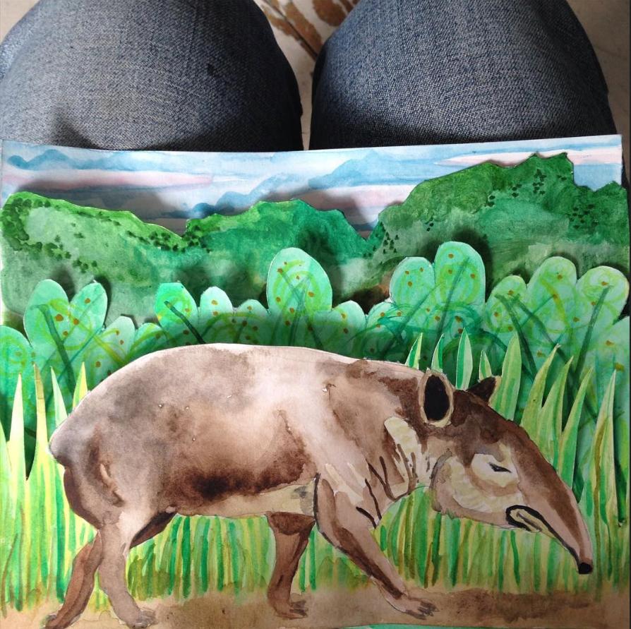 tapir card by Myfanwy Tristram