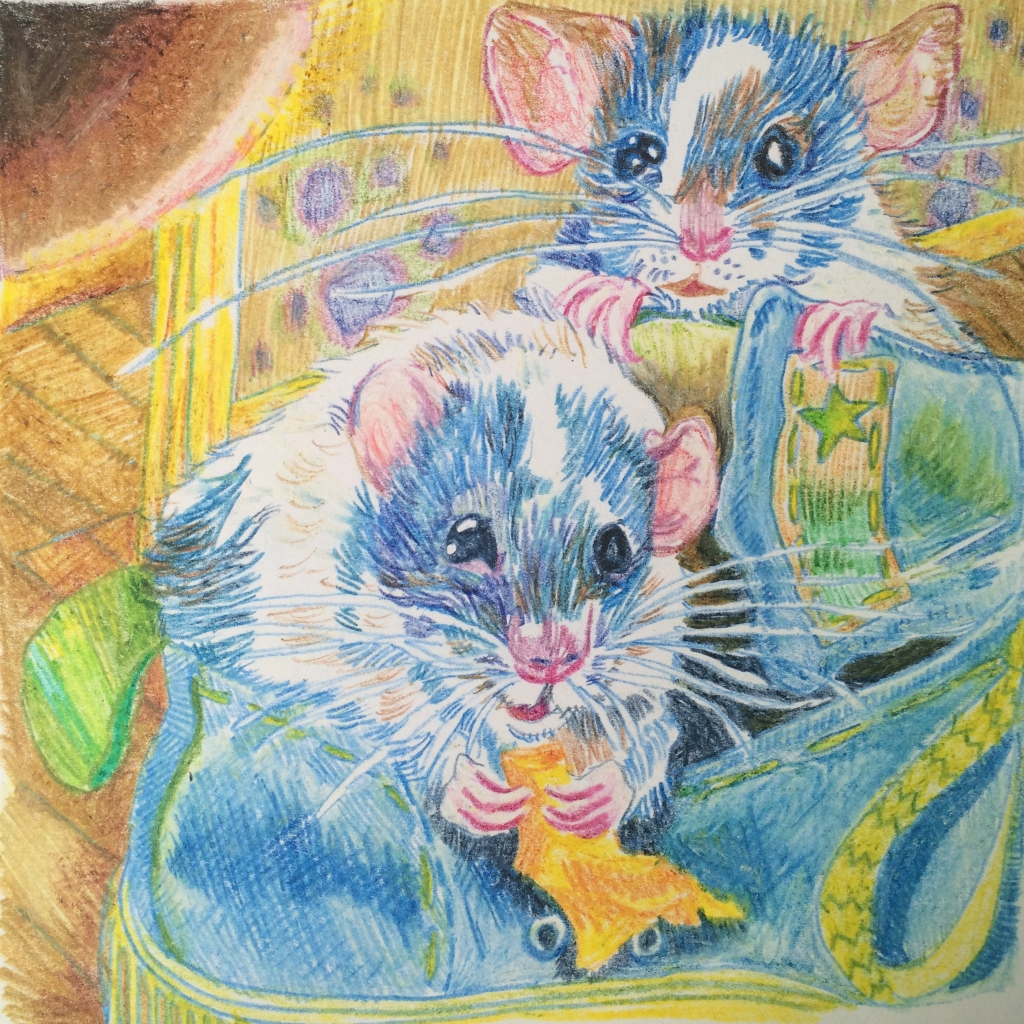rats drawn in pencil crayon by Myfanwy Tristram - photo