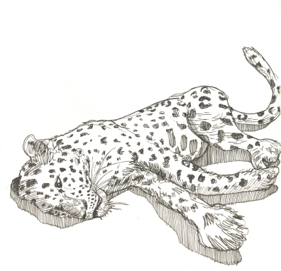 Oct 8: A leopard was loose in India's largest car factory. It was tranquilised and will be released back into the wild.