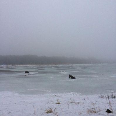 More frozen sea!
